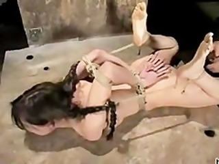 Sasha Grey, Sascha Grey, Sasha Gray  Porno Videos & Sex Photos.