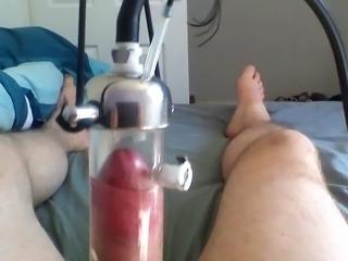 Беременная доильный аппарат.